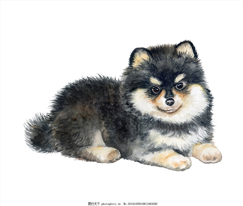 小狗图案,土狗,野狗,母狗,狗妈妈,看家犬,看家狗